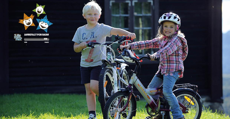 Familie på sykkeltur på fjellet