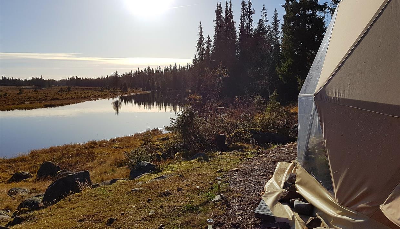 åstaelva kart Arctic Dome | Glamping i Åstdalen   Glamping in Sjusjøen  åstaelva kart