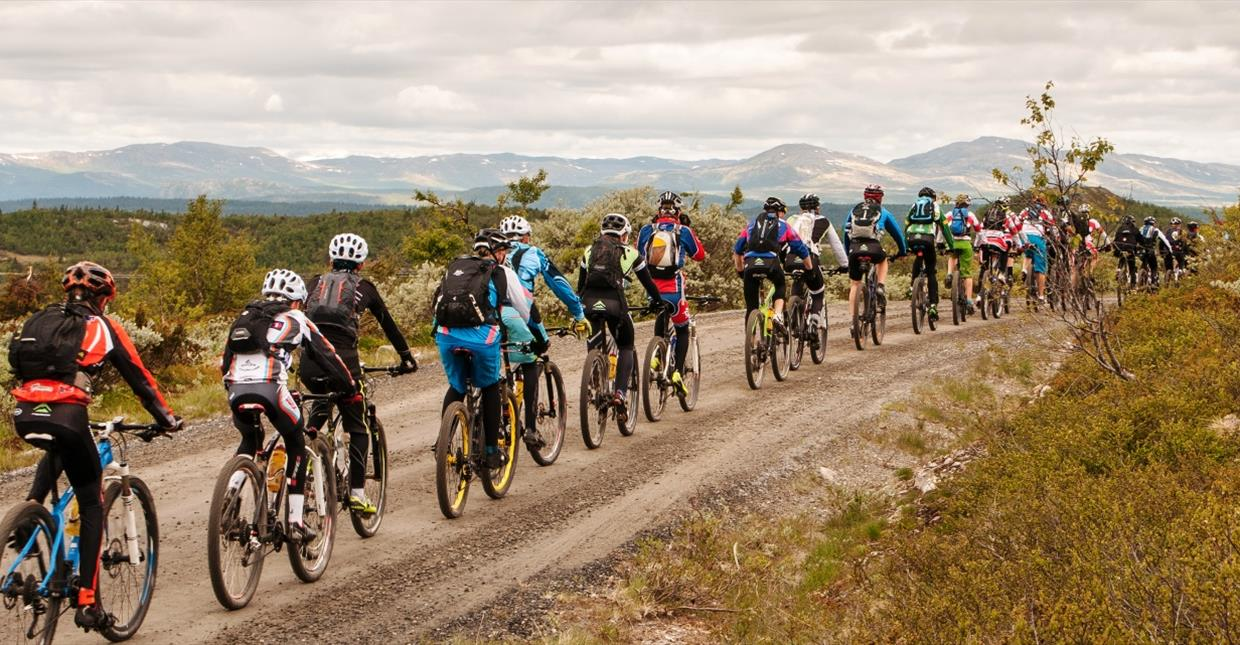 25 Young mountain bikers on a mountain road