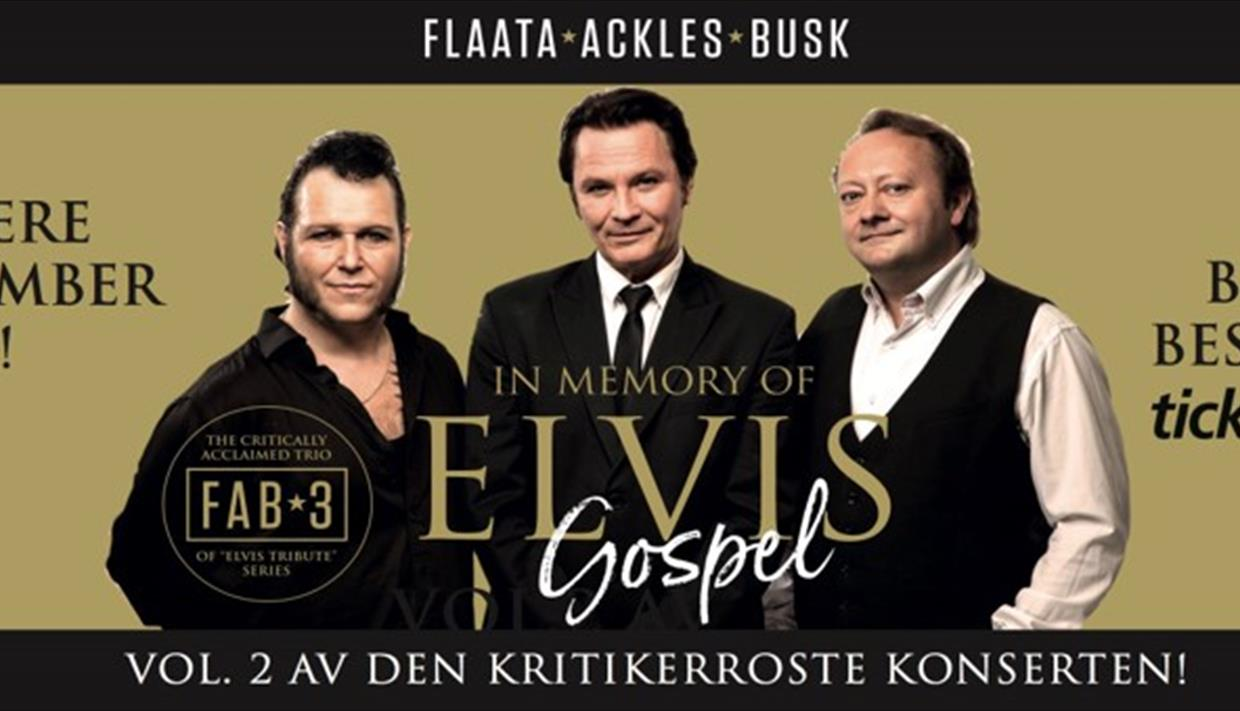 In Memory of Elvis Gospel vol.2
