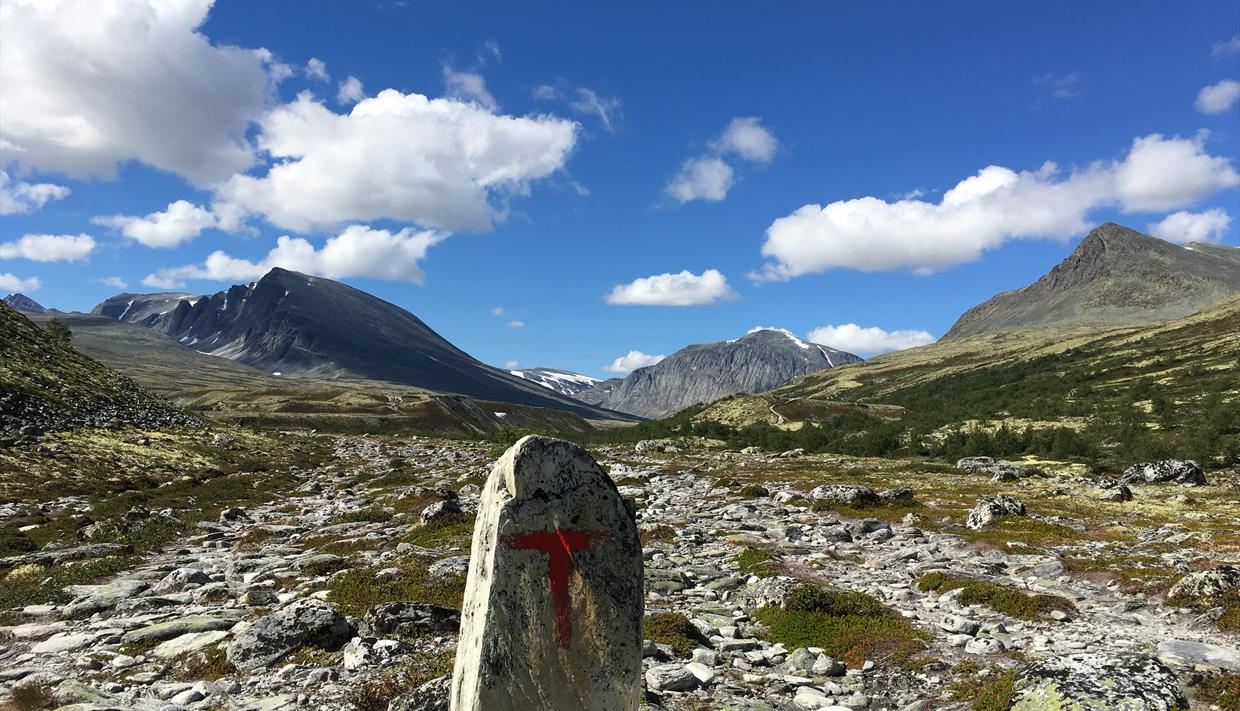 Footpath in the Rondane National Park